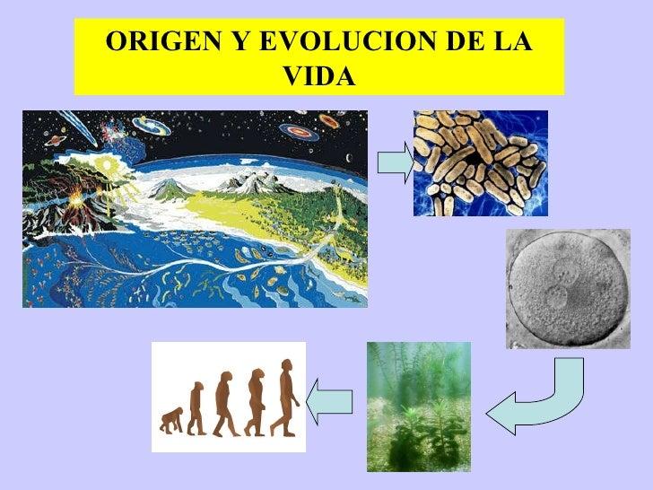 Bio electivo-iii