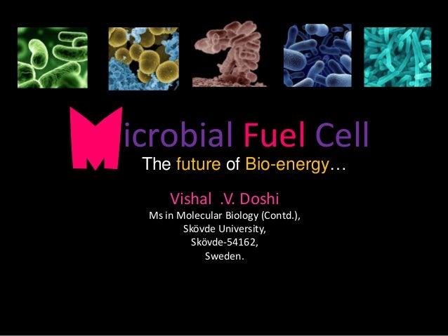 Bio fuel cells | Sludge Treatment