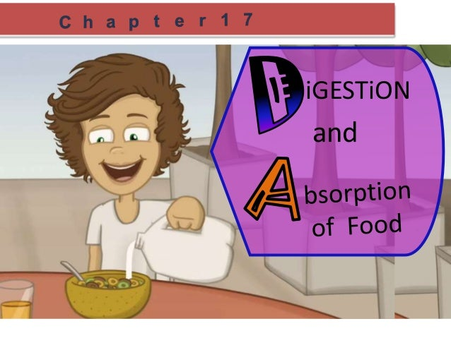 Absorption Digestion Digestion And Absorption of