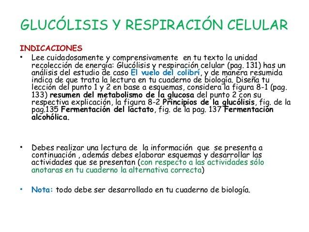 GLUCÓLISIS Y RESPIRACIÓN CELULAR INDICACIONES • Lee cuidadosamente y comprensivamente en tu texto la unidad recolección de...