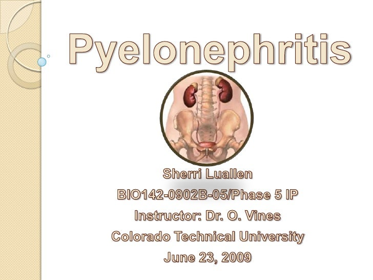 Pyelonephritis<br />Sherri Luallen<br />BIO142-0902B-05/Phase 5 IP<br />Instructor: Dr. O. Vines<br />Colorado Technical U...