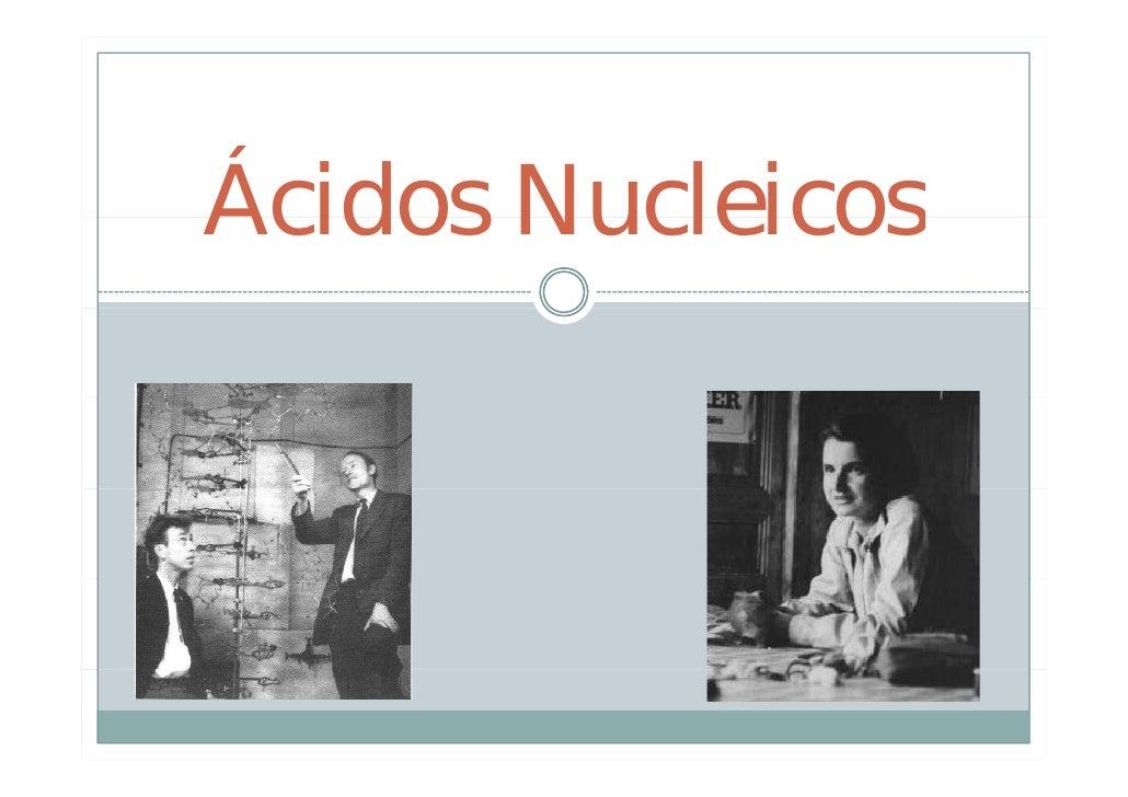 Bio2  7 Ac Nucleicos