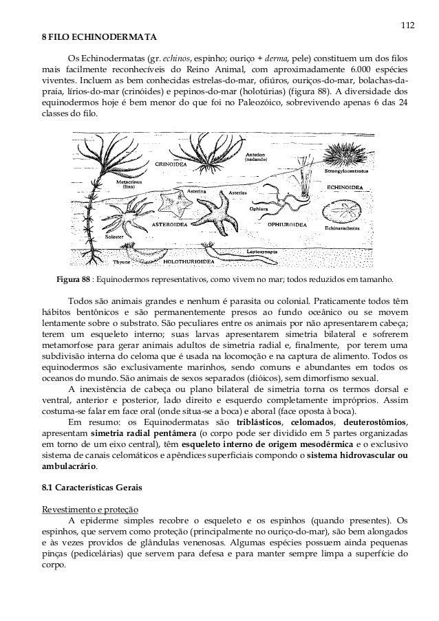 APOSTILA ZOOLOGIA PARTE 3