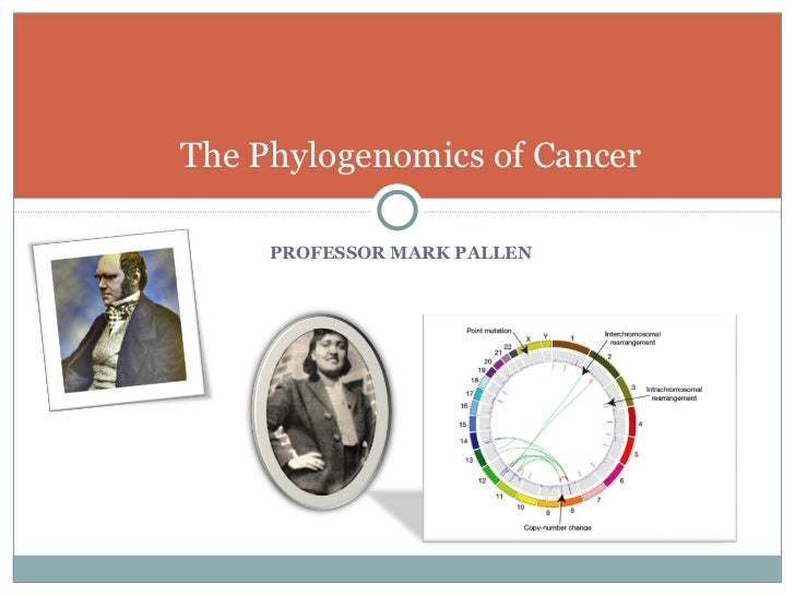 Bio380 Cancer Phylogenomics