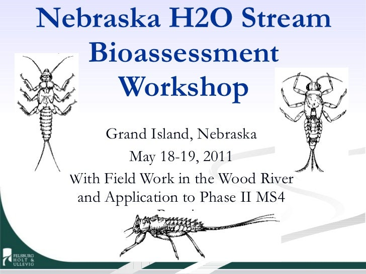 Nebraska H2O Stream Bioassessment Workshop Grand Island, Nebraska May 18-19, 2011 With Field Work in the Wood River and Ap...