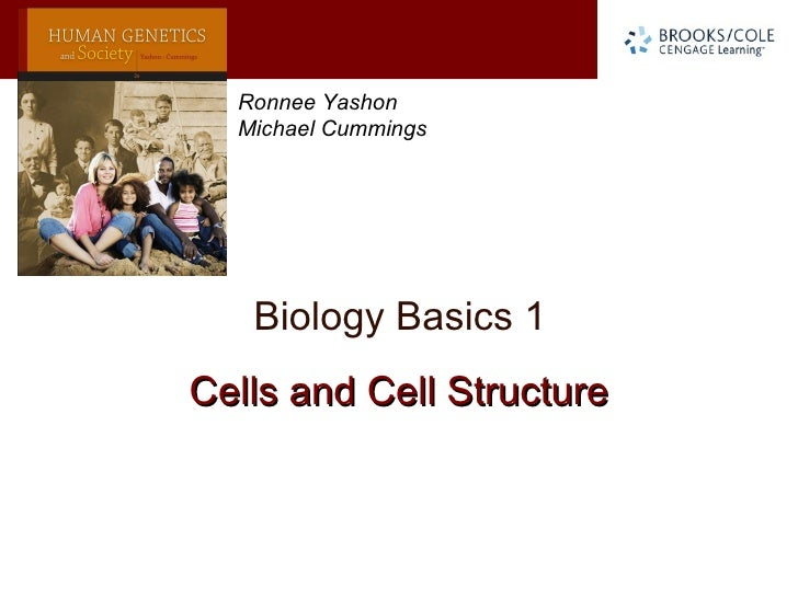 Ronnee Yashon  Michael Cummings   Biology Basics 1Cells and Cell Structure