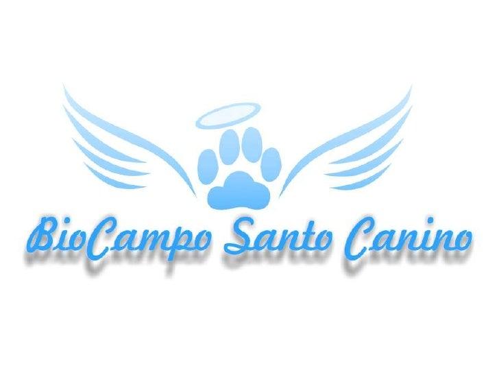 MISIÓN• Bio Campo Santo Canino ofrece  consuelo y tranquilidad a quienes sufren  la pérdida de su miembro especial de la  ...