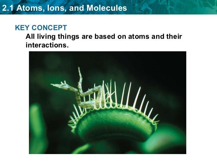 Bio ch02 chemistry basis