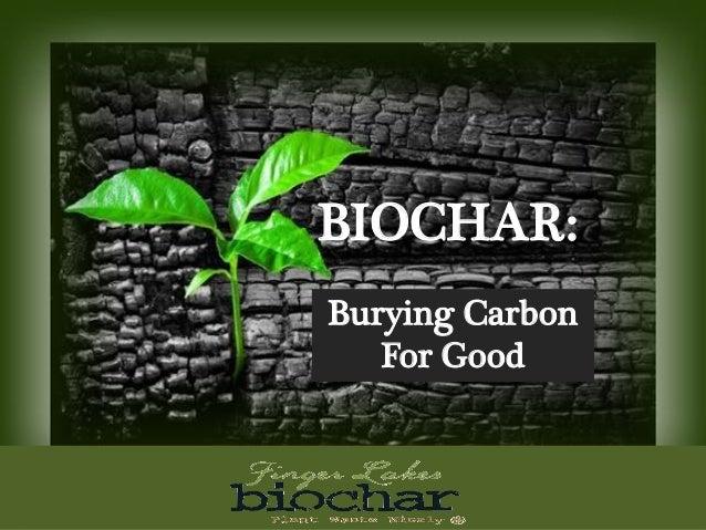 BIOCHAR: Burying Carbon For Good