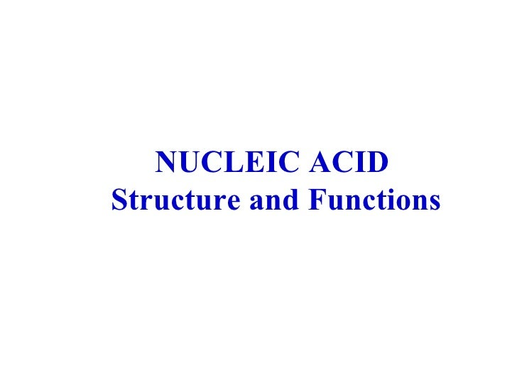 Biochem   nucleotides(structure and functions) june.18.2010