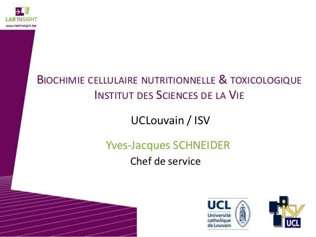 BIOCHIMIE CELLULAIRE NUTRITIONNELLE & TOXICOLOGIQUE INSTITUT DES SCIENCES DE LA VIE Yves-Jacques SCHNEIDER UCLouvain / ISV...