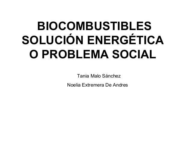 BIOCOMBUSTIBLESSOLUCIÓN ENERGÉTICAO PROBLEMA SOCIALTania Malo SánchezNoelia Extremera De Andres