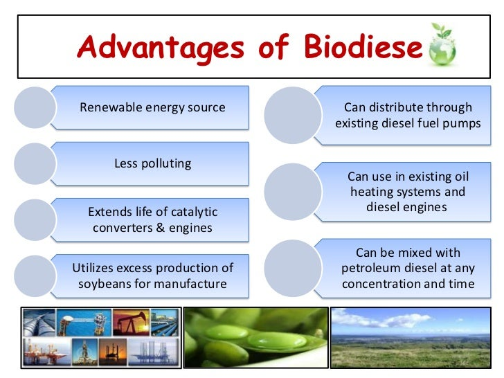 promising applications for the production of biofuels through algae