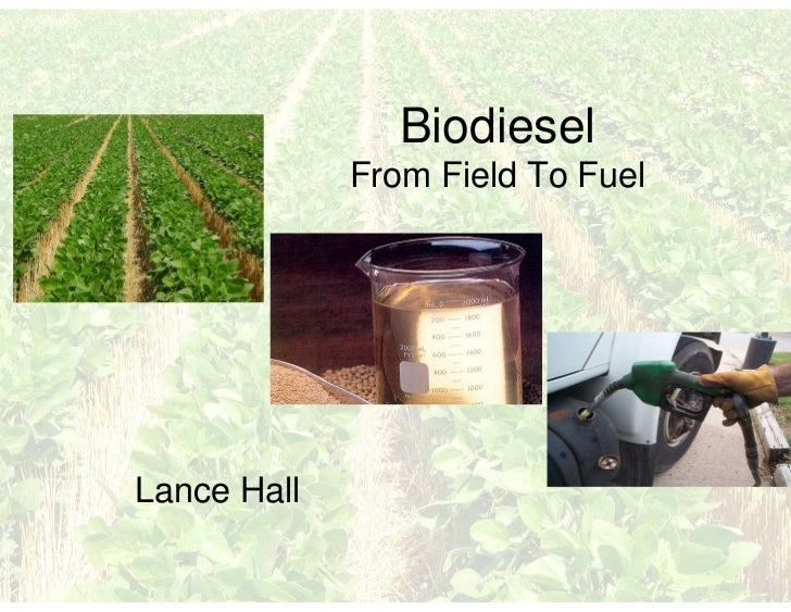 Small Scale Biodiesel Production