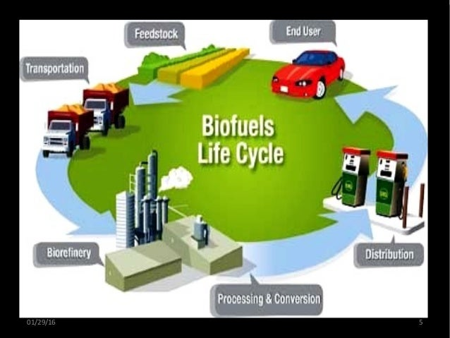 the demand for alternative energy source biofuel Bioenergy is currently the fastest growing source of renewable energy to a demand for high-yielding energy crops with commercialised as an energy crop.