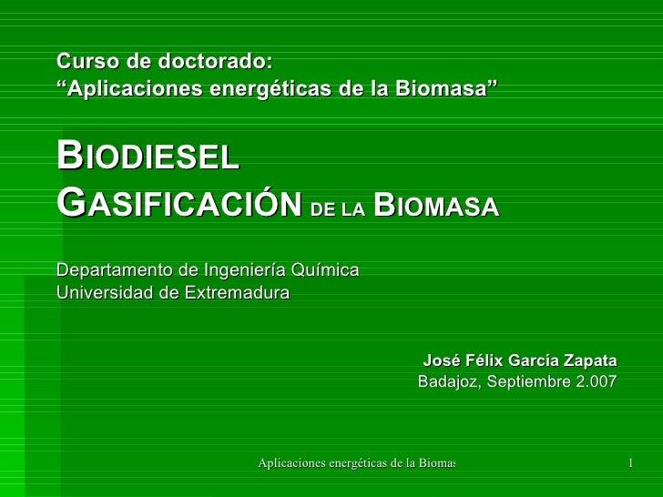 """Curso de doctorado: """" Aplicaciones energéticas de la Biomasa"""" B IODIESEL G ASIFICACIÓN   DE LA   B IOMASA Departamento de ..."""
