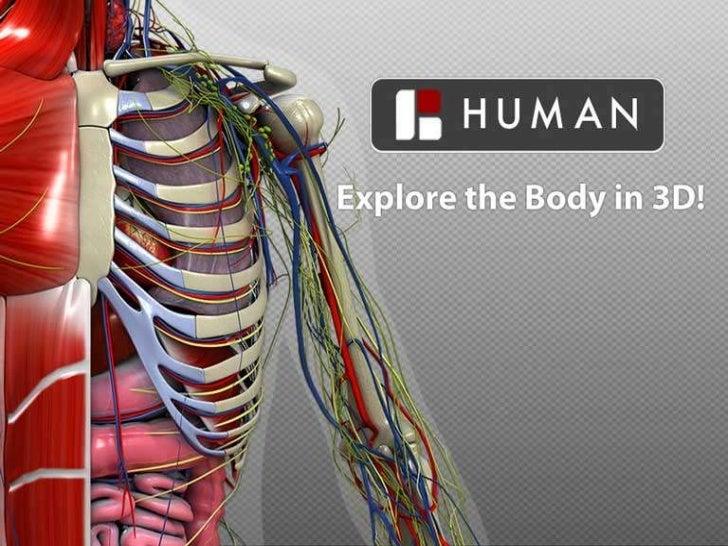 BioDigitalSystems Human Body