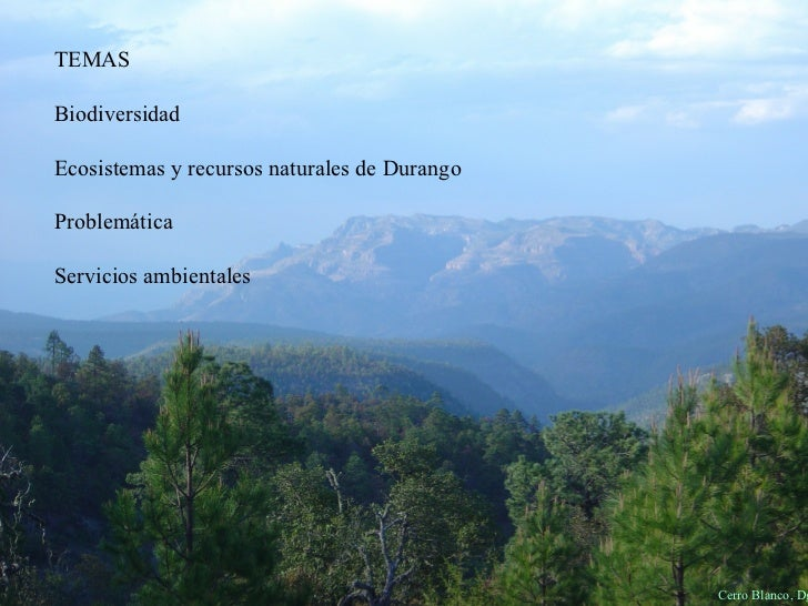 Cerro Blanco, Dgo. TEMAS Biodiversidad Ecosistemas y recursos naturales de Durango Problemática Servicios ambientales