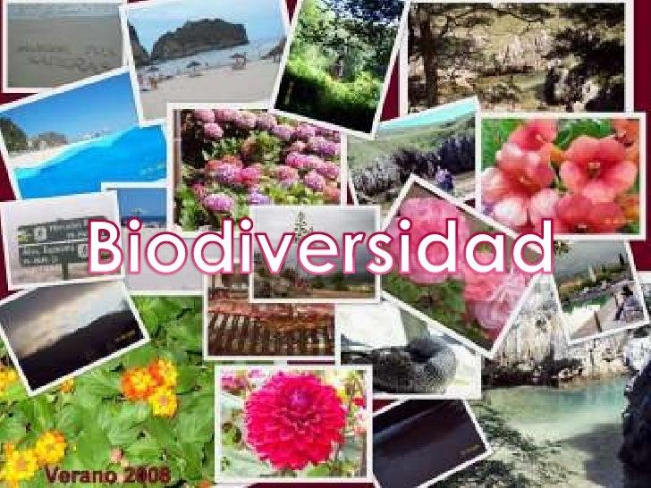 Biodiversidad<br />
