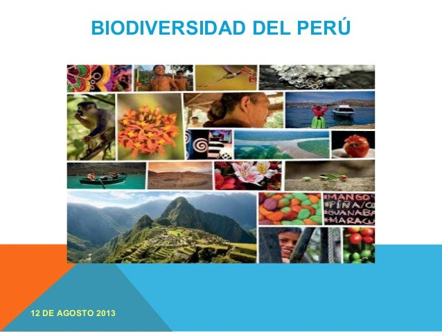 BIODIVERSIDAD DEL PERÚ 12 DE AGOSTO 2013
