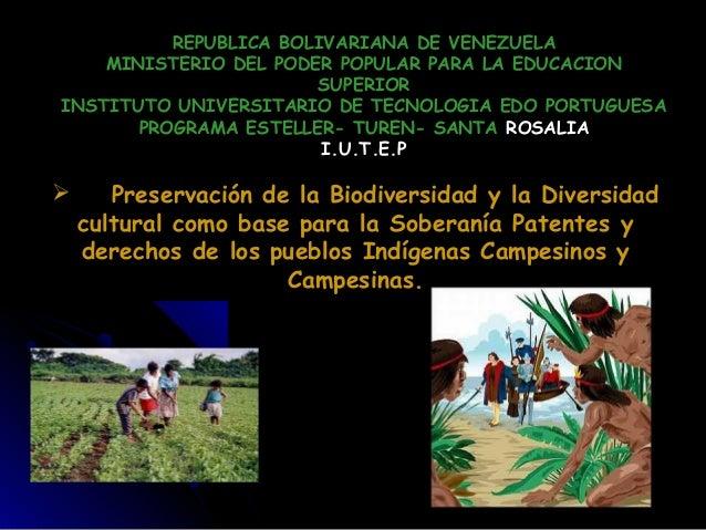 REPUBLICA BOLIVARIANA DE VENEZUELA MINISTERIO DEL PODER POPULAR PARA LA EDUCACION SUPERIOR INSTITUTO UNIVERSITARIO DE TECN...