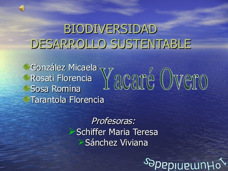 BIODIVERSIDAD DESARROLLO SUSTENTABLE <ul><li>González Micaela </li></ul><ul><li>Rosati Florencia </li></ul><ul><li>Sosa Ro...