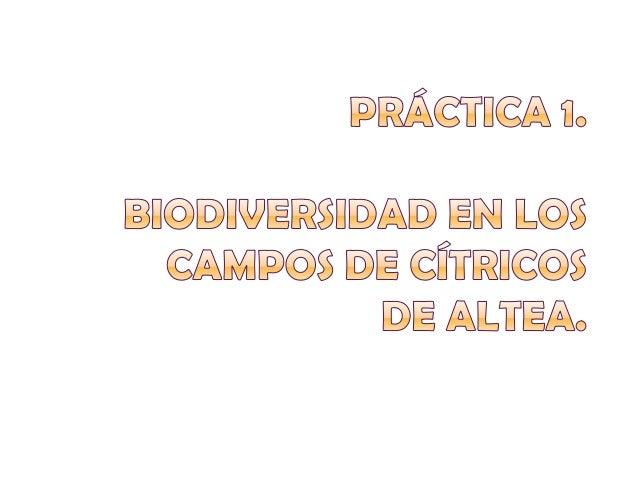 1. ¿Qué es la biodiversidad?     2. ¿Qué son las especiesa) Diversos productos               protegidas?   biológicos.b) L...