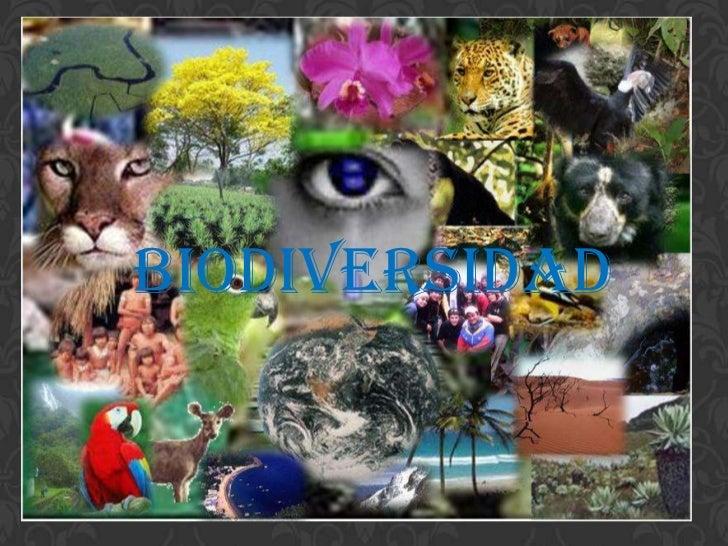 Biodiversidad foro de_reconocimiento