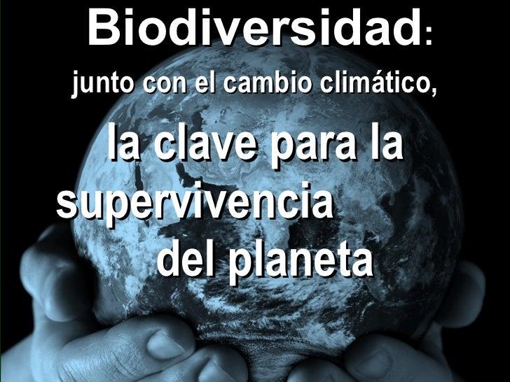 <ul><li>Biodiversidad :  </li></ul><ul><li>junto con el cambio climático, </li></ul><ul><li>la clave para la supervivencia...