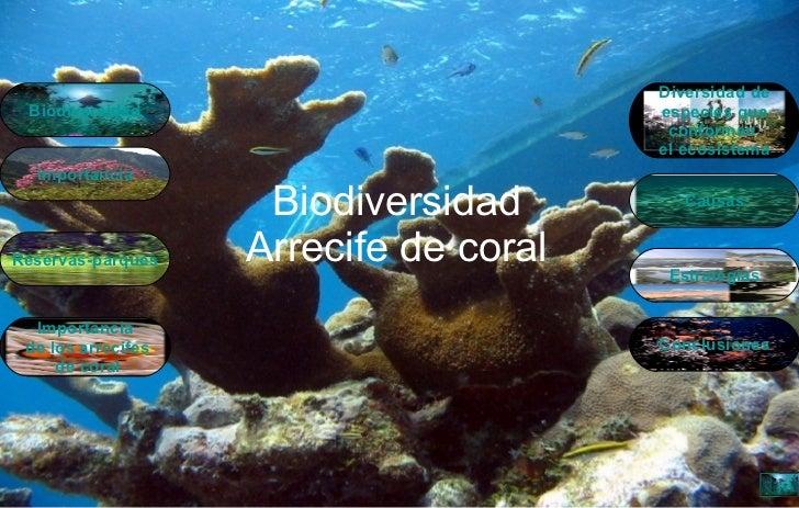 Biodiversidad Arrecife de coral Causas Biodiversidad Reservas-parques Importancia  de los arrecifes  de coral Conclusiones...
