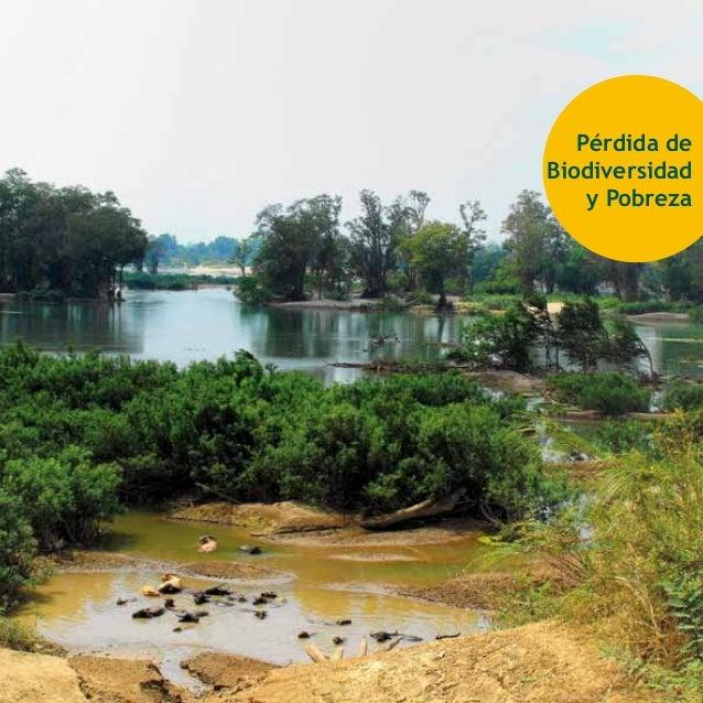 Pérdida de Biodiversidad y Pobreza