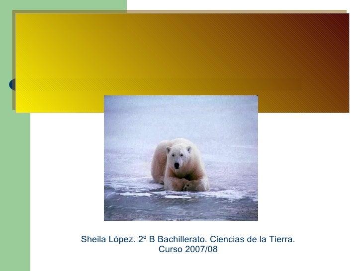 Sheila López. 2º B Bachillerato. Ciencias de la Tierra. Curso 2007/08