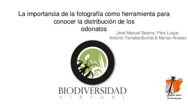 La importancia de la fotografía como herramienta para conocer la distribución de los odonatos José Manuel Sesma, Pere Luqu...