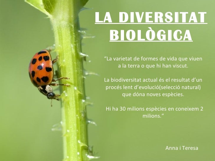 """LA DIVERSITAT BIOLÒGICA """" La varietat de formes de vida que viuen a la terra o que hi han viscut. La biodiversitat actual ..."""