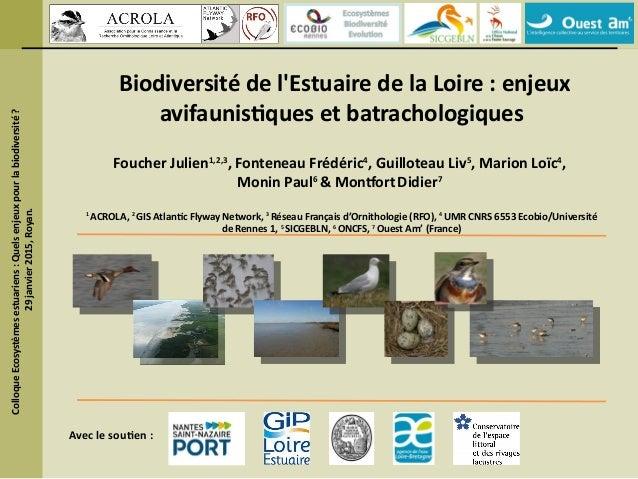 Biodiversité de l'Estuaire de la Loire : enjeux avifaunistiques et batrachologiques Foucher Julien1,2,3 , Fonteneau Frédér...