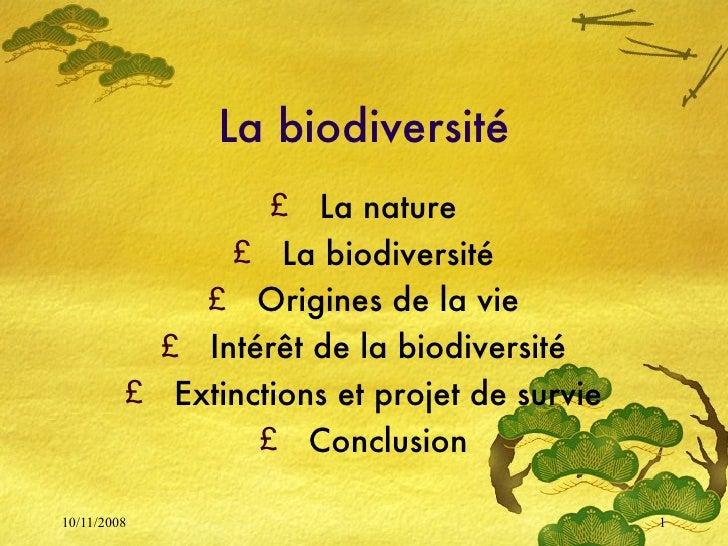 La biodiversité <ul><li>La nature </li></ul><ul><li>La biodiversité </li></ul><ul><li>Origines de la vie </li></ul><ul><li...