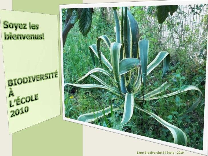 Soyezlesbienvenus!<br />BIODIVERSITÉ<br />À<br />L'ÉCOLE<br />2010<br />Expo Biodiversité à l'École - 2010<br />
