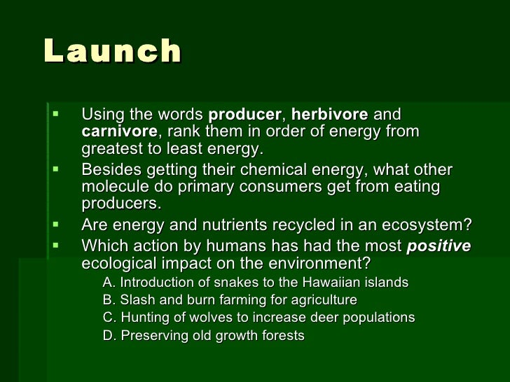 Launch <ul><li>Using the words  producer ,  herbivore  and  carnivore , rank them in order of energy from greatest to leas...