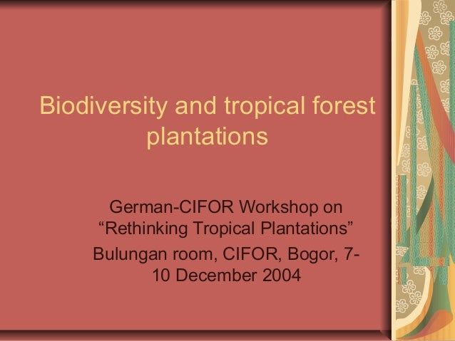 """Biodiversity and tropical forest plantations German-CIFOR Workshop on """"Rethinking Tropical Plantations"""" Bulungan room, CIF..."""