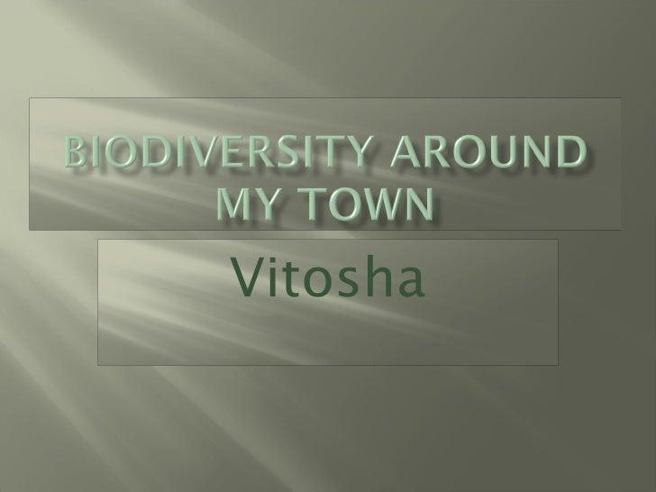 Biodiversity around my town (3)