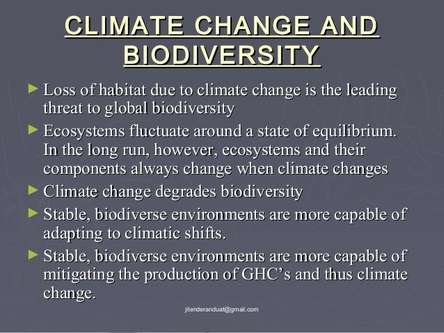 threats to biodiversity and conservation of biodiversity essay 11 conclusion: what actions are needed and necessary actions for addressing threats to biodiversity play in promoting biodiversity conservation and.