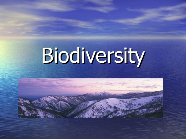 strategies to improve biodiversity crisis Environmental planning for sustainable urban development  environmental planning for sustainable urban development  strategies and plans for specific and.