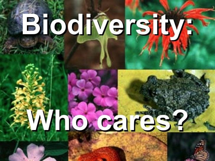 Biodiversity:  Who cares?