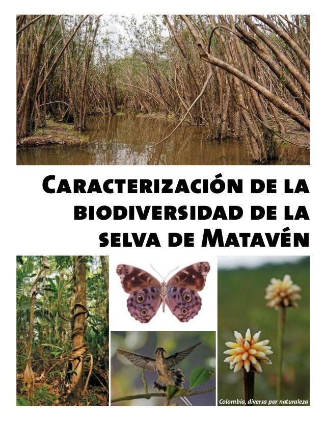 Biodiversidad en  selva de Matavén