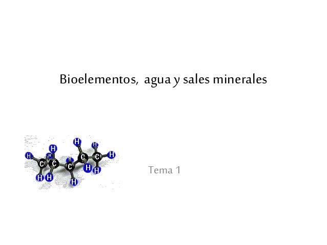 Bioelementos, agua y sales minerales Tema 1