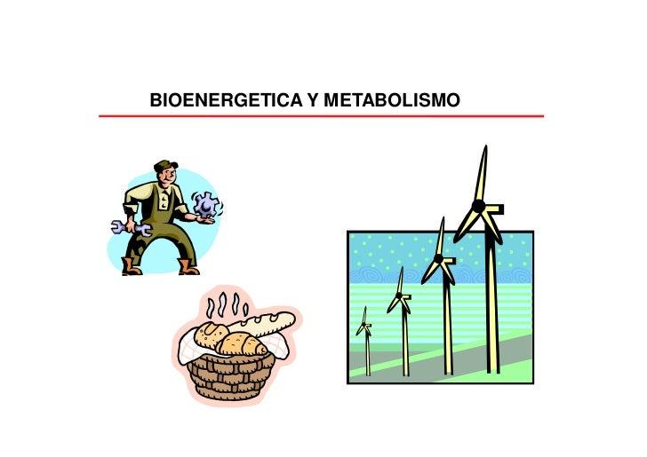 BIOENERGETICA Y METABOLISMO