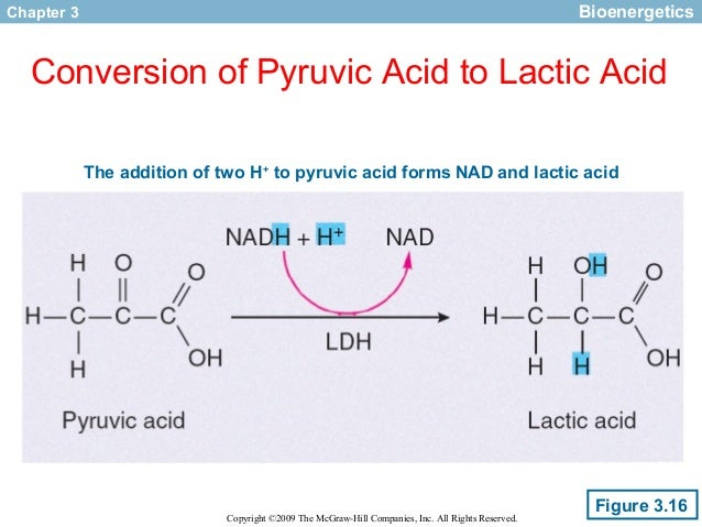 convert nad to nadh anabolic or catabolic