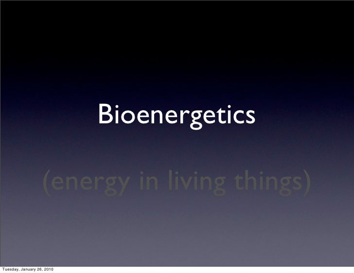 Topic 4 – Bioenergetics