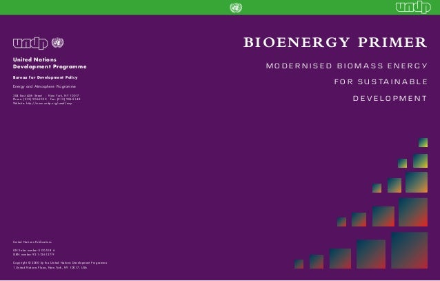 BIOENERGY PRIMER United Nations Development Programme Bureau for Development Policy Energy and Atmosphere Programme 304 Ea...