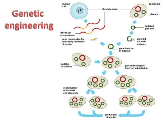 bioprocess engineering basic concepts pdf